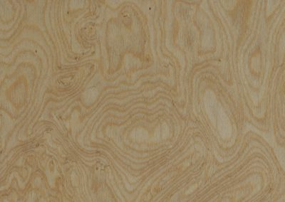 RC Maple Burr 8FT Silk