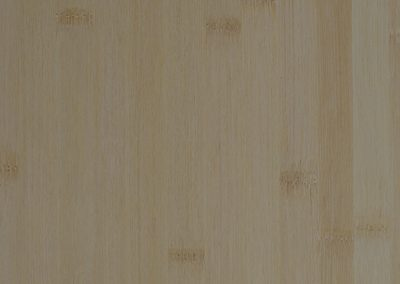 Bamboo Light Plain Cut Silk