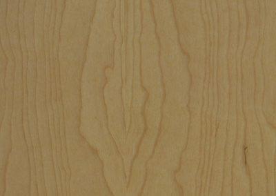 Birch Tan Silk
